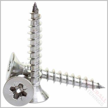 6 x 100mm Stainless Steel Screws