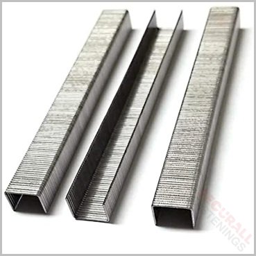 80 Series Stainless Steel Staples 12mm