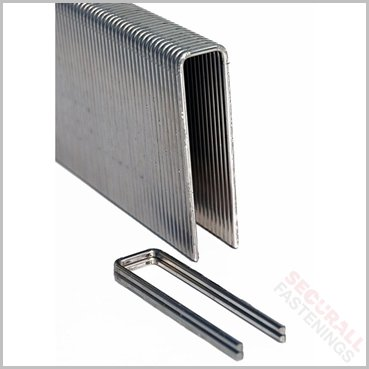 Tacwise 91 25mm Stainless Steel Staples