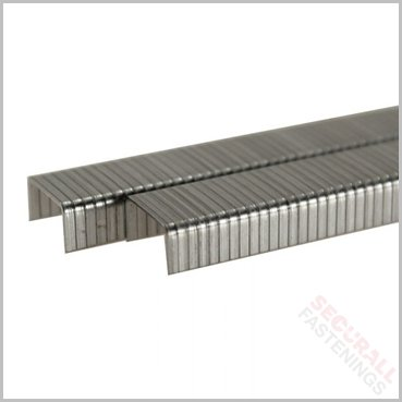 50 Series 6mm Staples Galvanised