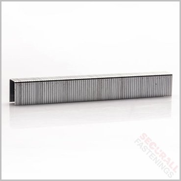 T50 Stainless Steel Staples 8mm