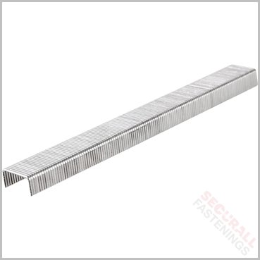 53 16mm Staples Galvanised